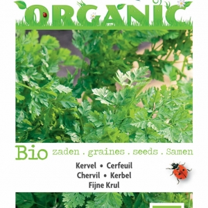 Buzzy® Organic Kervel Fijne Krul (BIO)