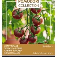 Buzzy® Pomodori, Tomaat Black Cherry