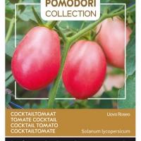 Buzzy® Pomodori, Tomaat Pink Thai Egg