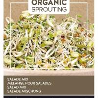 Buzzy® Organic Sprouting Salademengsel (BIO)
