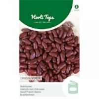 Canadian Wonder  (Kidney),15 gram
