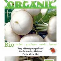 Buzzy® Organic Raap Platte Witte Mei (BIO)