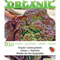 Buzzy® Organic Kropsla Wonder van Vier Jaargetijden (BIO)