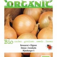 Buzzy® Organic Ui Rijnsburger 5, bewaarui (BIO)