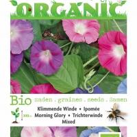 Buzzy® Organic Ipomoea, Klimmende Winde gemengd (BIO)