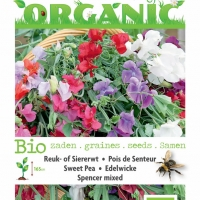 Buzzy® Organic Lathyrus, Reuk- of Siererwt Spencer (BIO)