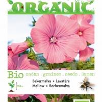 Buzzy® Organic Lavatera, Bekermalva rose/rood (BIO)