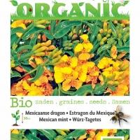 Buzzy® Organic Tagetes Lucida, Mexicaanse dragon (BIO)