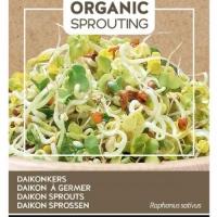 Buzzy® Organic Sprouting Daikonkers (BIO)