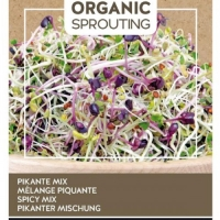 Buzzy® Organic Sprouting Salademengsel pikant (BIO)